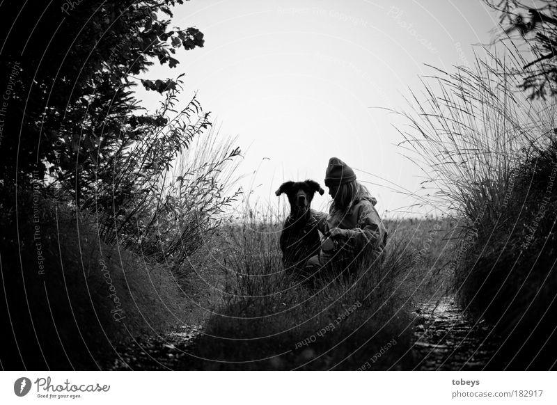 Freundschaft Freizeit & Hobby Spielen Ausflug Freiheit Natur Baum Gras Sträucher Tier Hund berühren Freude Glück Fröhlichkeit Lebensfreude Vertrauen Sicherheit