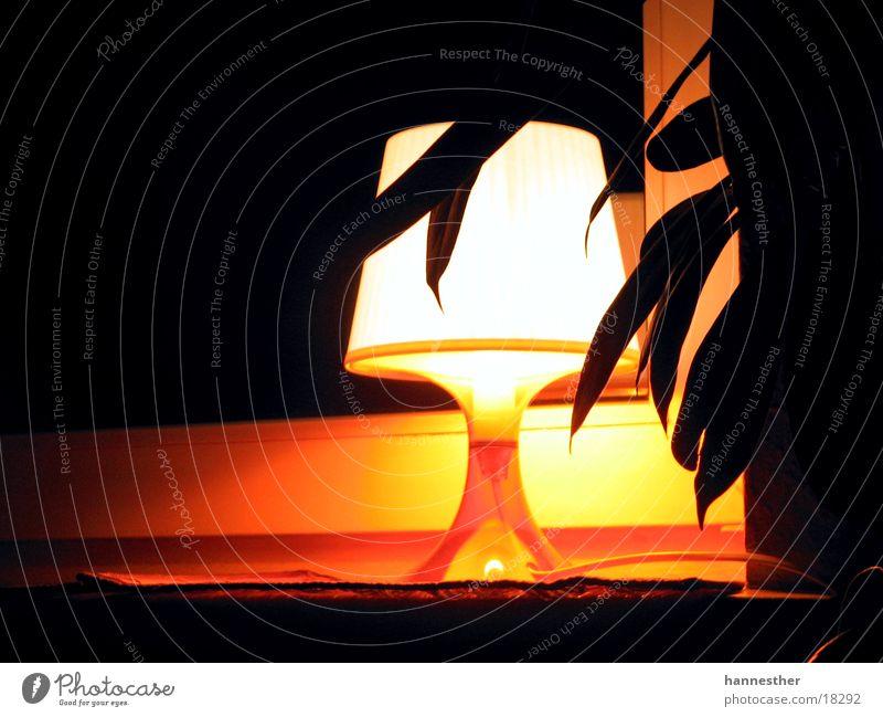 Lampe am Fenster weiß Blatt schwarz Lampe dunkel Fenster hell orange Häusliches Leben Fensterbrett