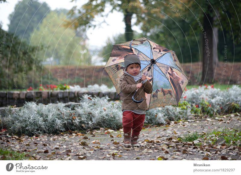 Regenschirm und du Freizeit & Hobby Spielen Kind Kleinkind Junge Kindheit Leben 1 Mensch 1-3 Jahre schön Herbst herbstlich Herbstlaub Oktober Außenaufnahme