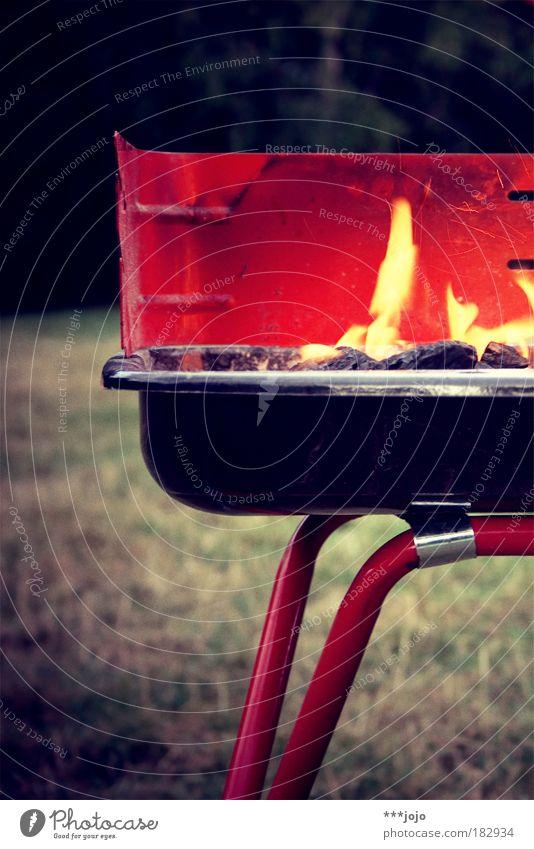 feu chamandeux. Sommer Ernährung Erholung Wärme Zusammensein Feste & Feiern Lebensmittel Feuer Kochen & Garen & Backen heiß Warmherzigkeit lecker Appetit & Hunger Rost Grillen