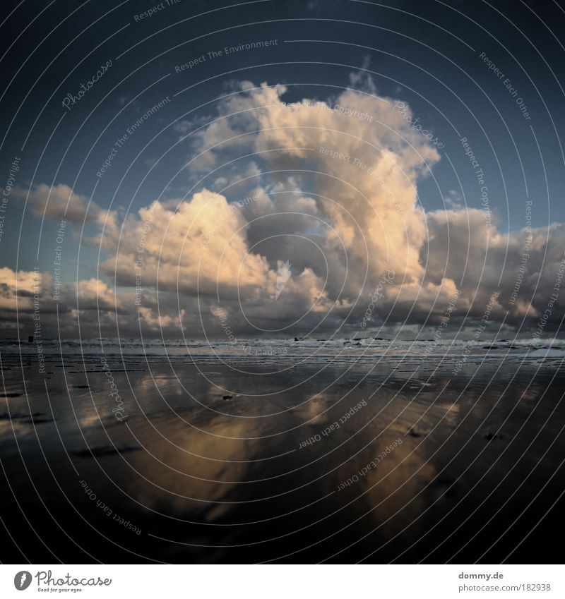 mushroom Natur Wasser Meer blau Sommer Strand Ferien & Urlaub & Reisen Wolken Einsamkeit kalt Freiheit Wärme Landschaft Wellen Küste leer