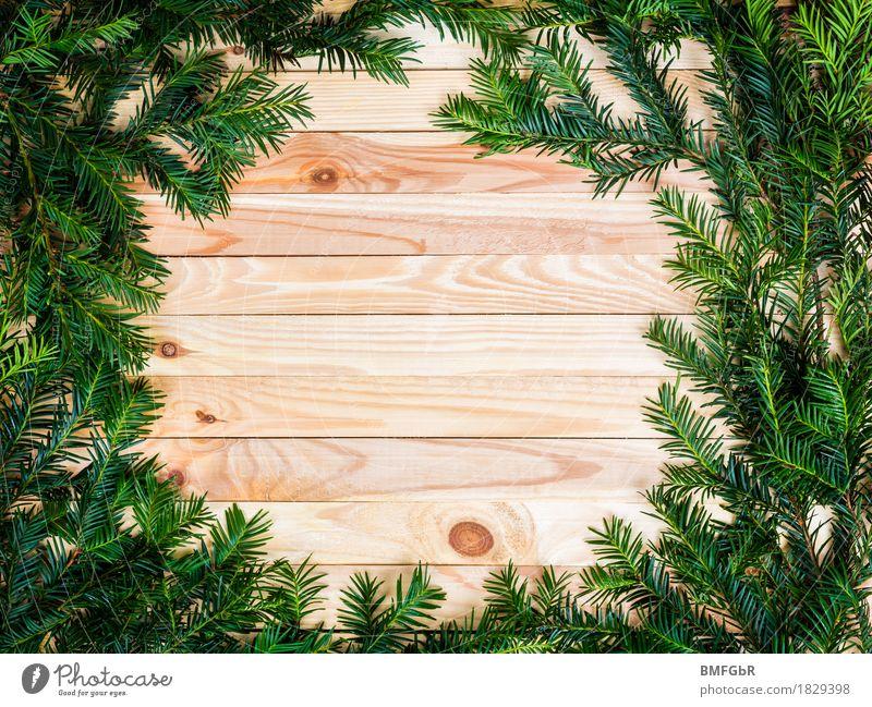 Holzkreis im Tannendickicht - ein lizenzfreies Stock Foto von Photocase