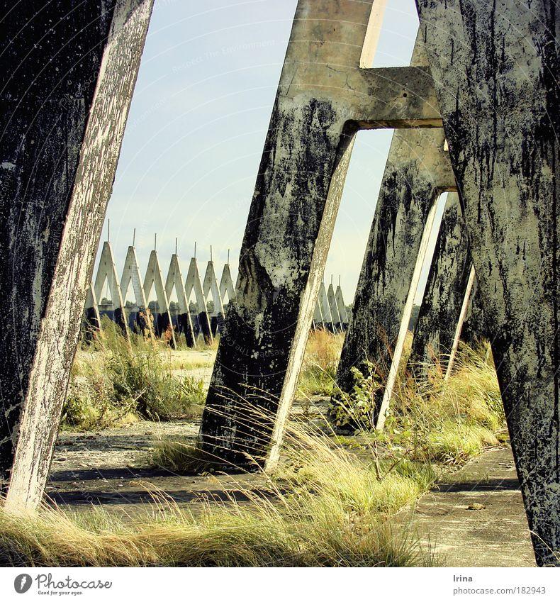 Architecture of fear I alt grün Einsamkeit gelb Gras Mauer grau Denken Beton bedrohlich kaputt Macht berühren Schutz verfallen fest
