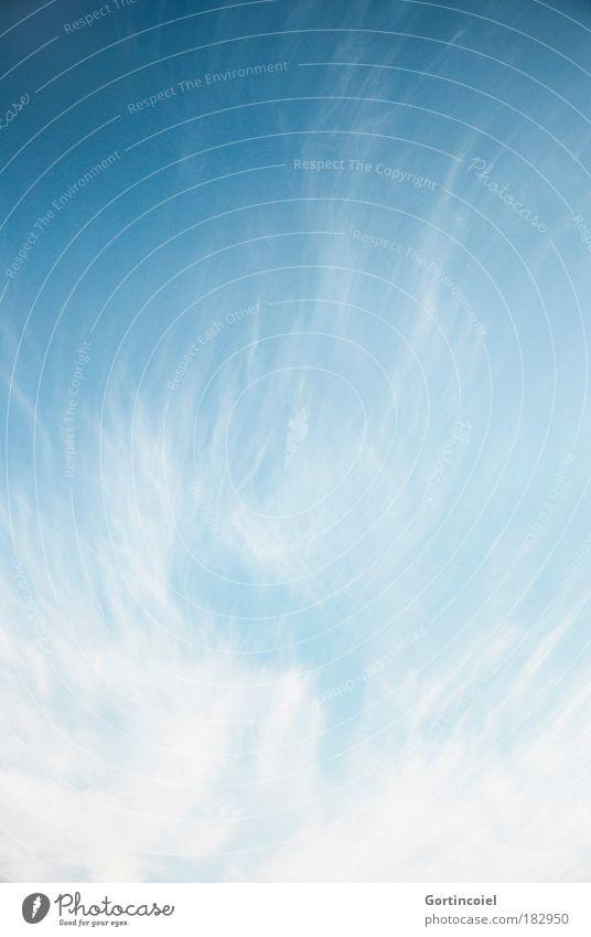 Durchatmen Umwelt Luft Himmel Wolken Sommer Klima Wetter Schönes Wetter Wind weich blau weiß Gelassenheit ruhig Erholung Freiheit Idylle Leichtigkeit harmonisch