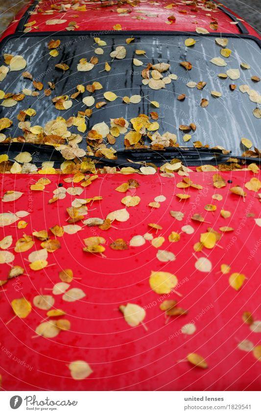 AK# Herbst-Rot Verkehr Verkehrsmittel Verkehrswege ästhetisch Endzeitstimmung herbstlich Herbstlaub Herbstfärbung Herbstbeginn Herbstwetter Herbstwind Blatt rot