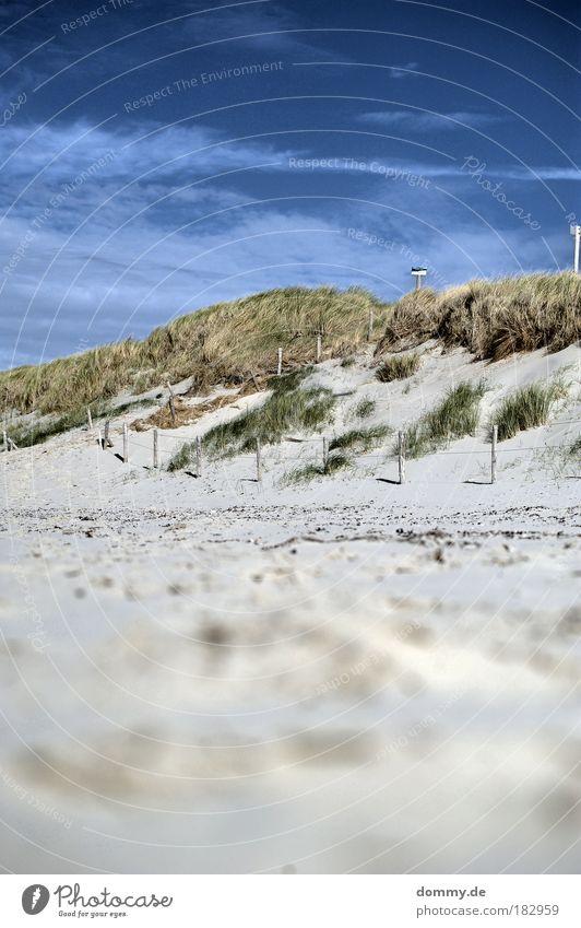 op de duinen Farbfoto Außenaufnahme Menschenleer Tag Schatten Kontrast Starke Tiefenschärfe Froschperspektive Tourismus Ferne Freiheit Sommer Sommerurlaub Natur