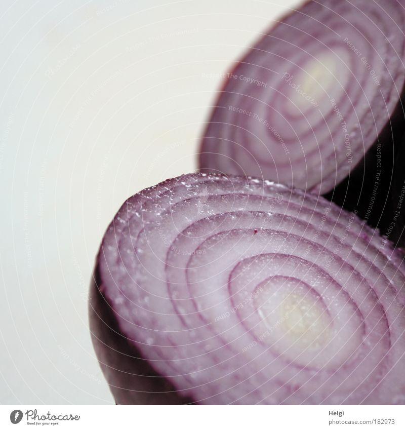 zum heulen.... Natur weiß Ernährung Gesundheit Lebensmittel frisch ästhetisch Kochen & Garen & Backen Küche rund einfach violett einzigartig natürlich Gemüse lecker