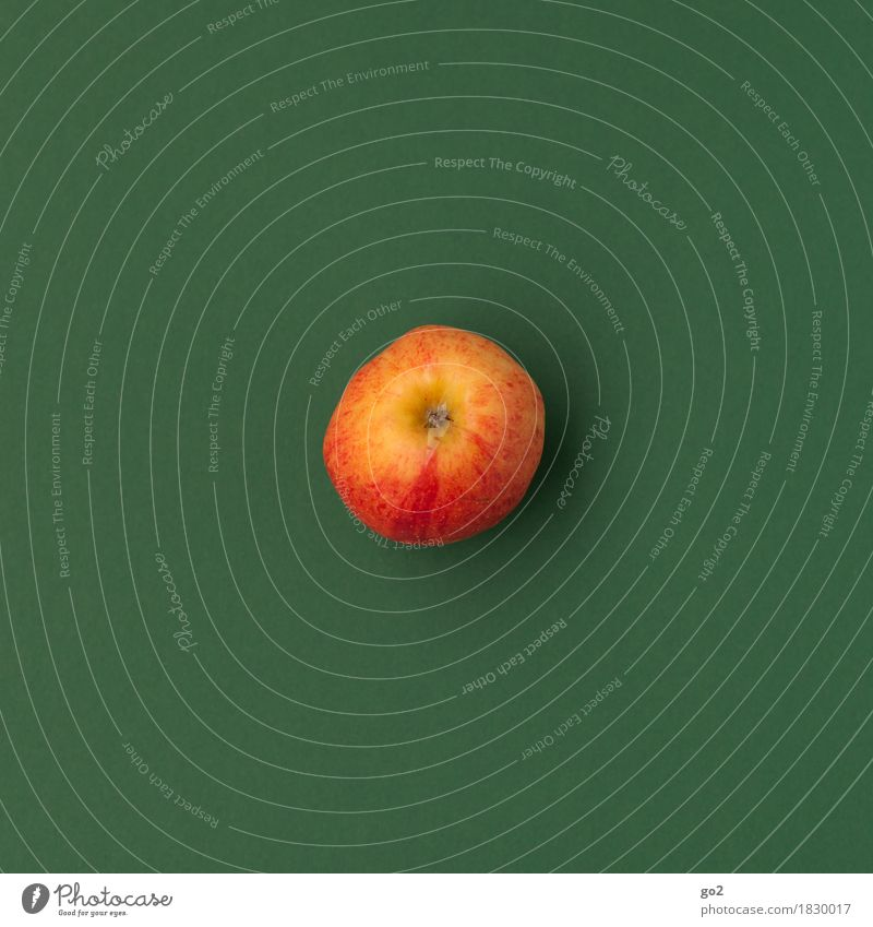 Apfel grün Gesunde Ernährung rot Essen Gesundheit Lebensmittel Gesundheitswesen Frucht einfach lecker Bioprodukte Vegetarische Ernährung Diät Fasten