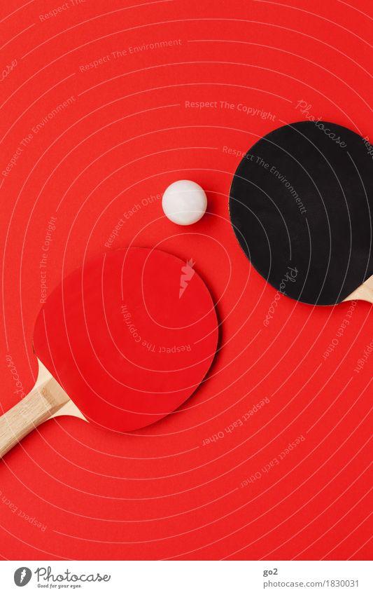 Ping + Pong weiß rot Freude schwarz Bewegung Sport Spielen Freizeit & Hobby sportlich Konkurrenz Ballsport Tischtennis Tischtennisschläger Tischtennisball