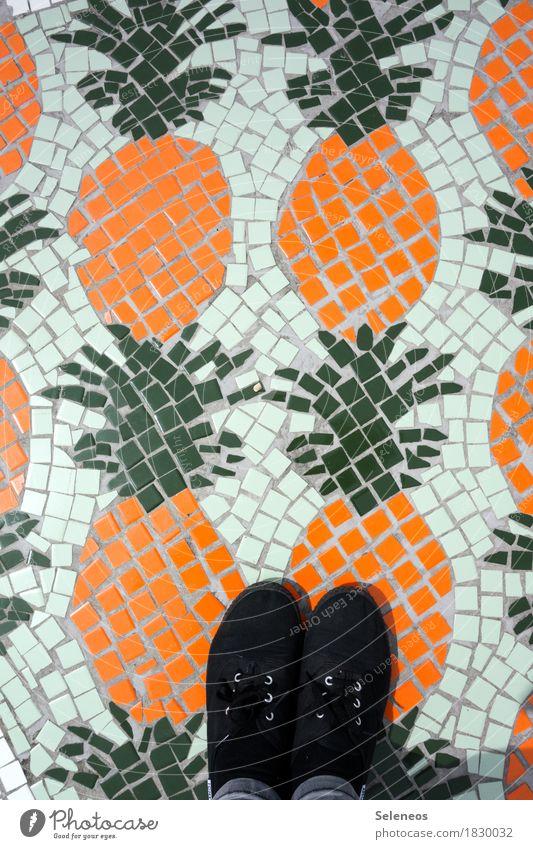 Ananas Lebensmittel Frucht Ananasblätter Ernährung Vegetarische Ernährung Diät Fuß Schuhe Gesundheit Mosaik Farbfoto Außenaufnahme