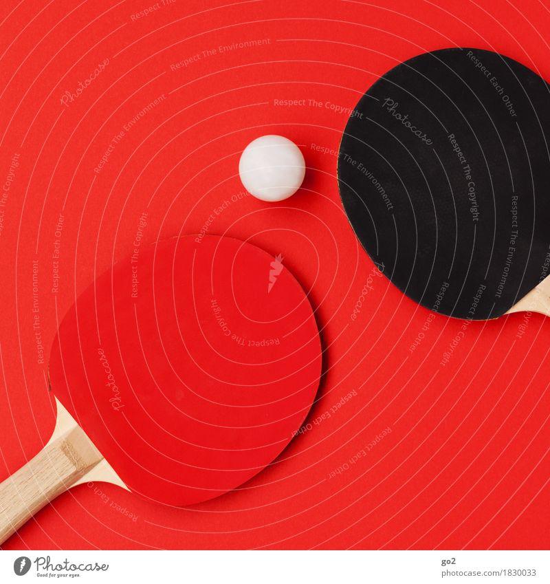 Tischtennis sportlich Freizeit & Hobby Spielen Sport Ballsport Sportveranstaltung Tischtennisball Tischtennisschläger rund rot schwarz weiß Bewegung Freude