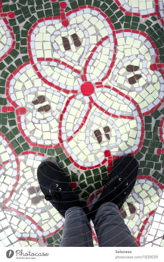 Apfelkerne Lebensmittel Frucht Ernährung Vegetarische Ernährung Diät Fasten Mensch Beine Fuß 1 Schuhe Dekoration & Verzierung Mosaik Zeichen Ornament Gesundheit