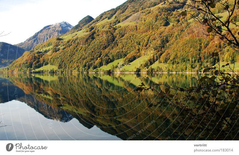 Operation Artischocke Farbfoto Außenaufnahme Muster Reflexion & Spiegelung Sonnenlicht Panorama (Aussicht) Weitwinkel Natur Landschaft Wasser Herbst Baum Wald