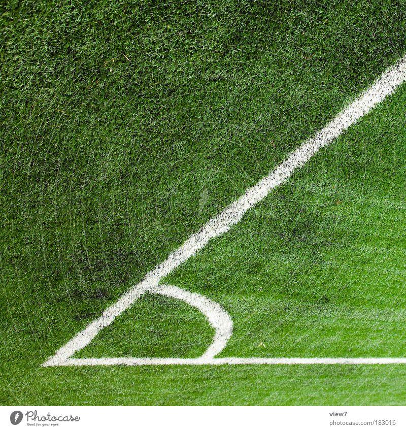 60 Grad Natur grün Ferne Gras Linie außergewöhnlich elegant Schilder & Markierungen groß Design modern authentisch Streifen Ecke einzigartig Ziel