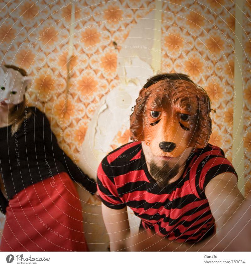 caught in the act Katze Mensch Hund Paar lustig orange Tanzen Angst maskulin verrückt Aktion kaputt retro Schutz Maske Karneval