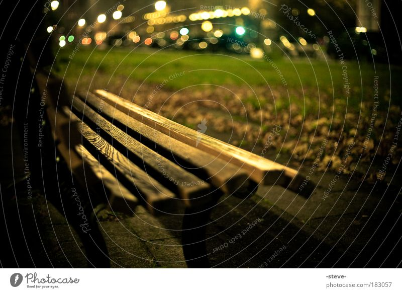 Herbstabend Park dunkel braun grün Bank Parkbank Herbstlaub Blatt gold Farbfoto Außenaufnahme Abend Dämmerung Schatten Unschärfe Schwache Tiefenschärfe