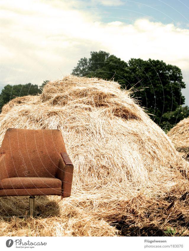 """""""Hier saß der Strohmann"""" Pflanze Wiese dunkel Umwelt Arbeit & Erwerbstätigkeit Feld gefährlich leer Sofa Mut dumm Sessel Weizen Hochmut"""