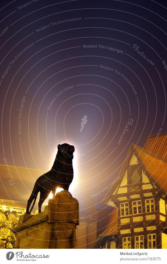 Der König unter den Löwen Stadt Tier Kraft Katze Kunst Erfolg ästhetisch Platz authentisch Schutz Nachthimmel Statue Wildtier Denkmal historisch Skulptur