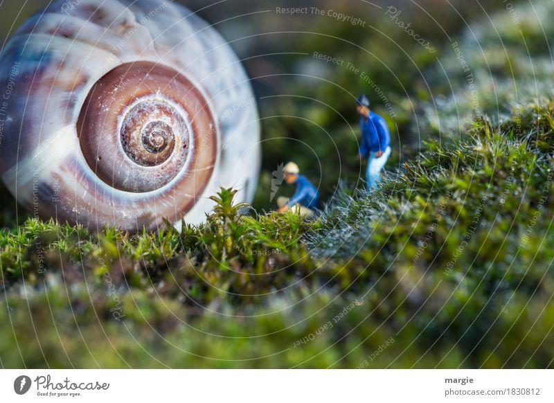 Miniwelten - Jemand zu Hause? Mensch maskulin Mann Erwachsene 2 Pflanze Gras Tier Schnecke 1 blau grün Schneckenhaus Spirale Besucher anklopfen Miniatur Figur