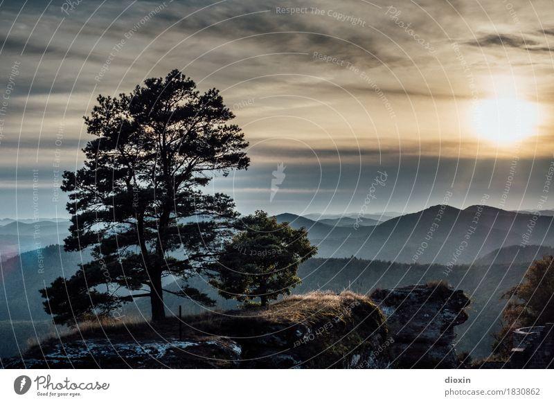 aussichtsreich [3] Ferien & Urlaub & Reisen Ausflug Ferne Umwelt Natur Landschaft Pflanze Himmel Wolken Sonne Sonnenaufgang Sonnenuntergang Sonnenlicht Baum