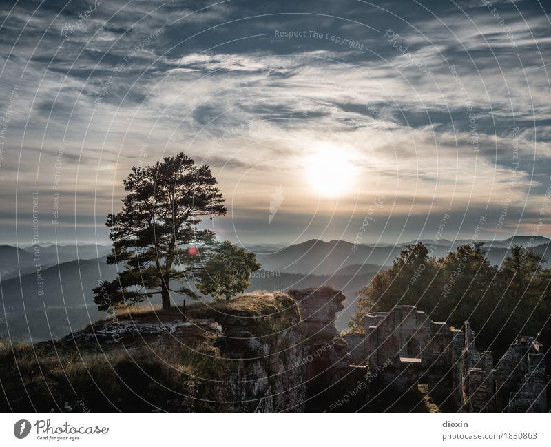 aussichtsreich [1] Ausflug Ferne Umwelt Landschaft Pflanze Himmel Wolken Sonne Sonnenaufgang Sonnenuntergang Sonnenlicht Baum Wald Berge u. Gebirge