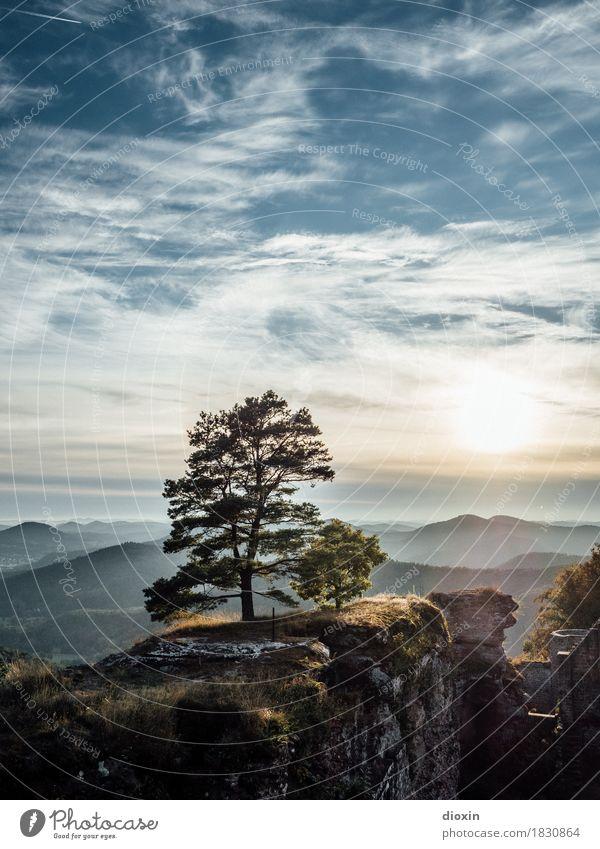 aussichtsreich [2] Ausflug Ferne Umwelt Natur Landschaft Pflanze Himmel Wolken Sonne Sonnenaufgang Sonnenuntergang Sonnenlicht Baum Wald Berge u. Gebirge