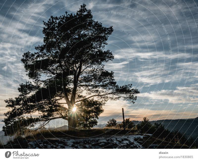 aussichtsreich [4] Ausflug Ferne Freiheit wandern Umwelt Natur Landschaft Pflanze Urelemente Erde Luft Himmel Wolken Sonne Sonnenaufgang Sonnenuntergang