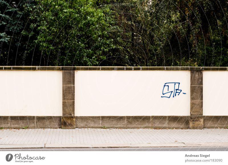 Johnfreiraum Natur Baum Stadt Straße Wand Stil Stein Mauer Wege & Pfade Landschaft Graffiti hell Design Umwelt