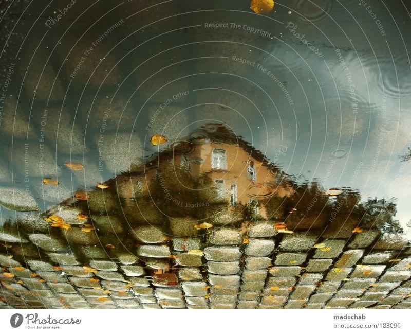 Ich bin eine Pfütze und das ist auch gut so Wasser Haus Einsamkeit Straße Traurigkeit Wege & Pfade Gebäude Regen Architektur Straßenverkehr Wetter Umwelt