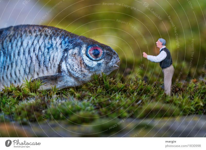 Miniwelten - Hör mir gut zu.... Lebensmittel Fisch Angeln Mensch maskulin Mann Erwachsene 1 Natur Pflanze Gras Tier blau grün Fischauge Schuppen Rede
