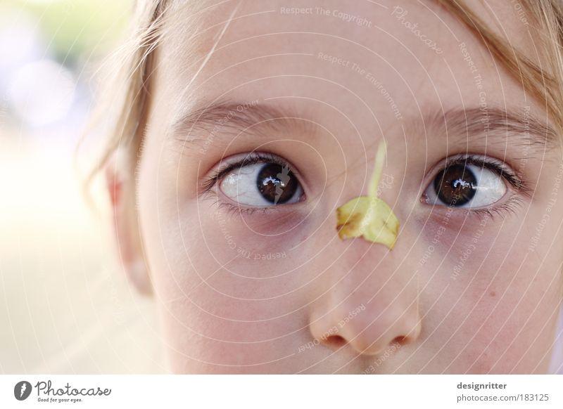 Herbstfrüchtchen Farbfoto Gedeckte Farben Außenaufnahme Nahaufnahme Detailaufnahme Textfreiraum links Licht Gegenlicht High Key Porträt Schielen Kind Mädchen