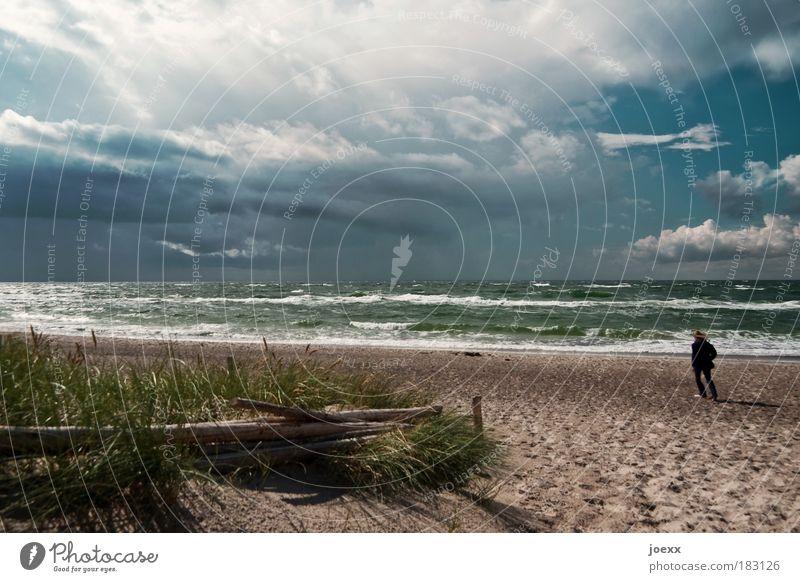 Gegen den Wind Mensch Frau Himmel Natur Wasser Ferien & Urlaub & Reisen Meer Strand Einsamkeit Wolken Erwachsene Küste Sand Luft Wetter Wellen