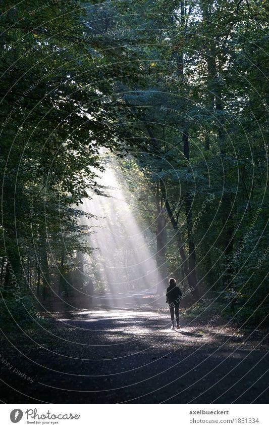 einsamerJogger läuft in das Licht Lifestyle sportlich Fitness Freizeit & Hobby Sport Sport-Training Joggen Mensch Frau Erwachsene 1 Natur Herbst Wetter Nebel