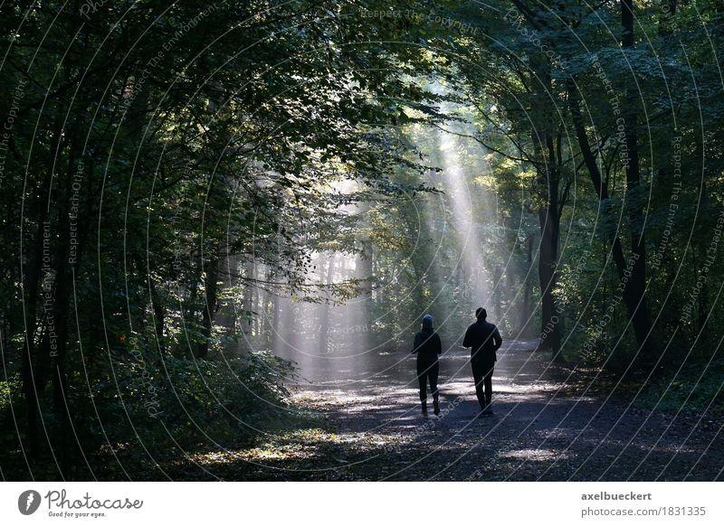 Jogger im nebligen Wald Lifestyle Fitness Freizeit & Hobby Sport Joggen Mensch Frau Erwachsene Mann Paar 2 Natur Herbst Wetter Nebel laufen dunkel Lichtstrahl