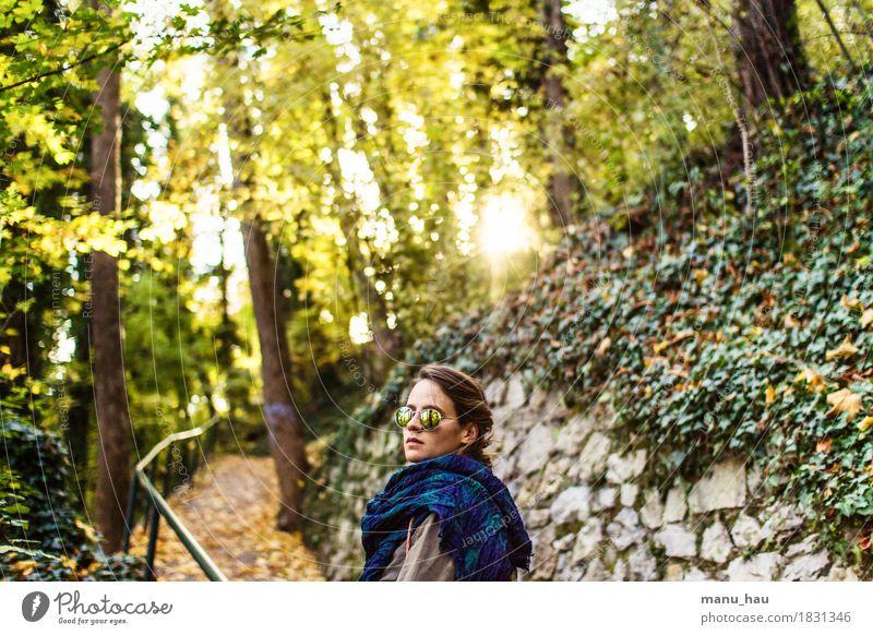 Autumn Day #5 Mensch Frau Natur Jugendliche schön Junge Frau Sonne ruhig Freude Wald 18-30 Jahre Erwachsene Leben Herbst Lifestyle feminin