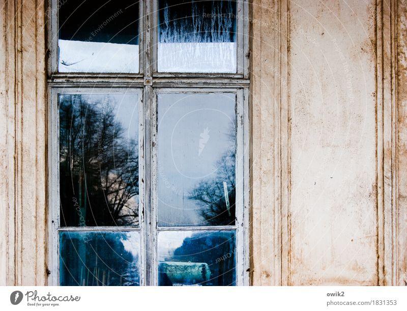 Uhyst Umwelt Pflanze Himmel Schönes Wetter Baum Lausitz Sachsen Deutschland Burg oder Schloss Mauer Wand Fassade Fenster Fensterscheibe Fensterrahmen Holz Glas