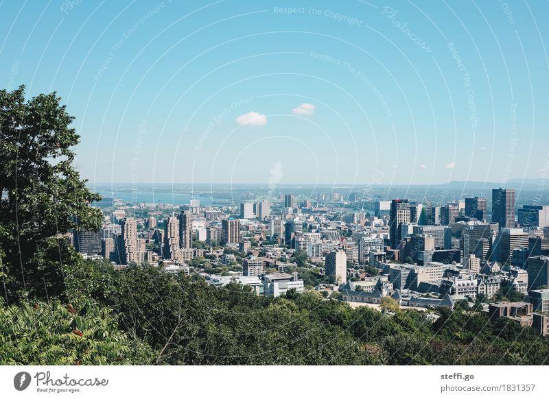 Montreal Ferien & Urlaub & Reisen Stadt Ferne Architektur Gebäude Tourismus Horizont Park Wachstum Ausflug modern Hochhaus ästhetisch Perspektive Unendlichkeit