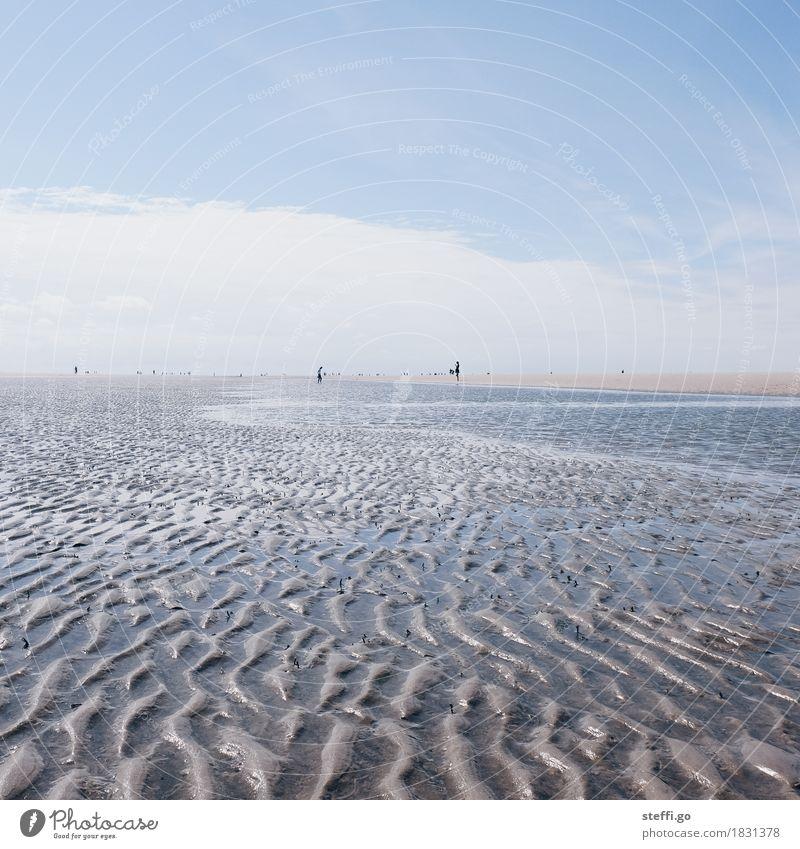 Lust auf 'ne Wattwanderung? Mensch Natur Ferien & Urlaub & Reisen Sommer Sonne Meer Landschaft Erholung Ferne Strand Umwelt Freiheit Sand Tourismus Horizont