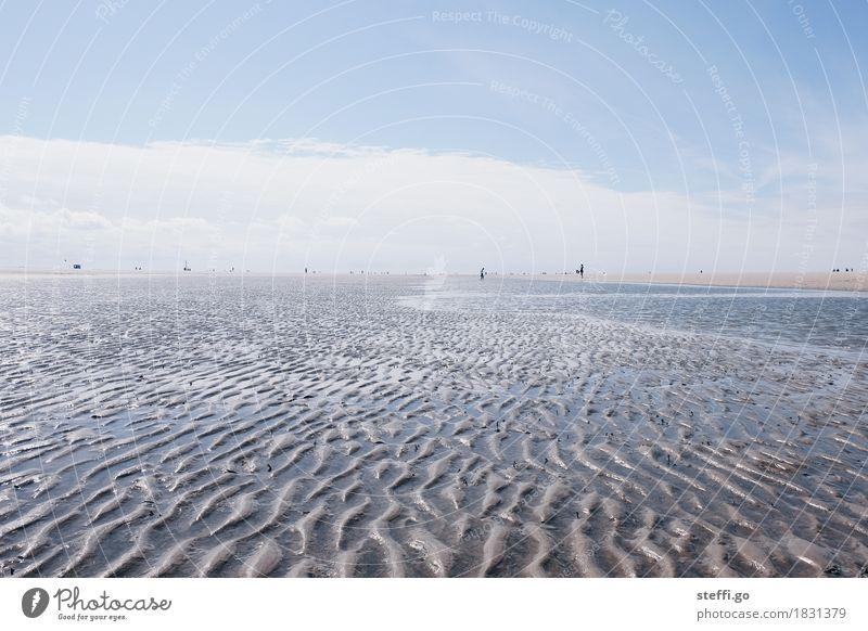 Wattweite Mensch Natur Ferien & Urlaub & Reisen Sommer Wasser Sonne Meer Landschaft Erholung Ferne Strand Umwelt Wege & Pfade Küste Freiheit Sand