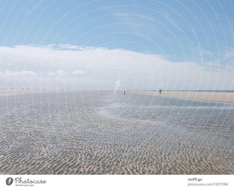 quer durchs Watt Mensch Natur Ferien & Urlaub & Reisen Sonne Landschaft Erholung Ferne Strand Umwelt Leben Wege & Pfade Küste Freiheit Menschengruppe Tourismus