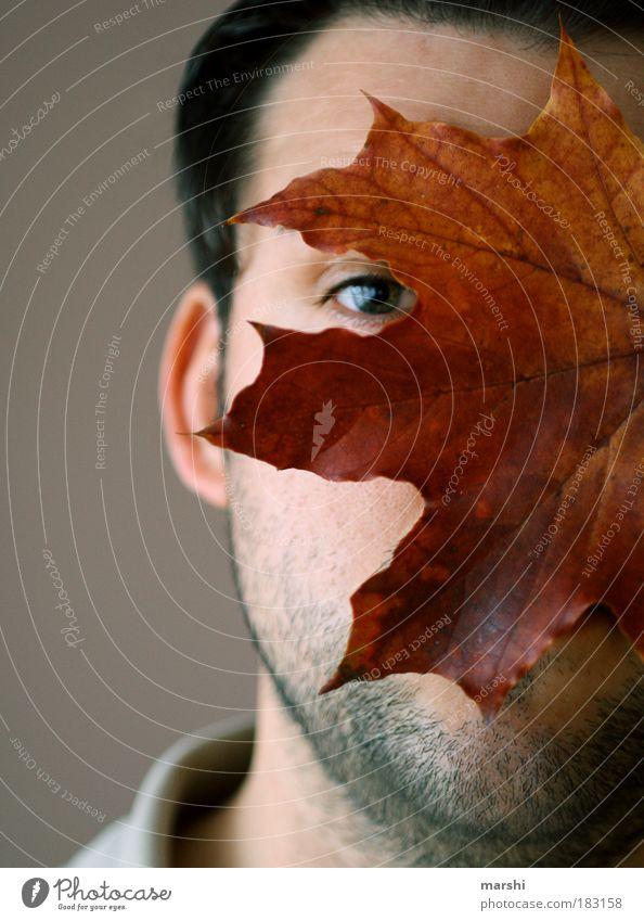 my autumn(beraubender) boy Mensch Mann Natur Jugendliche Pflanze Blatt Auge Herbst Gefühle Kopf Haut Erwachsene maskulin Bart stachelig verdeckt