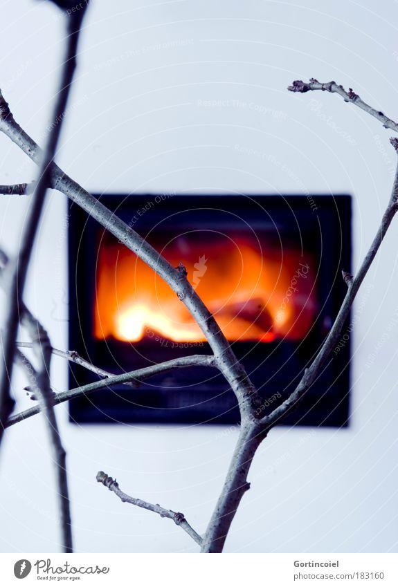 Es wird Winter Erholung kalt Wärme Innenarchitektur Stil Lifestyle Stimmung Design Häusliches Leben Energie Warmherzigkeit Romantik Feuer Jahreszeiten