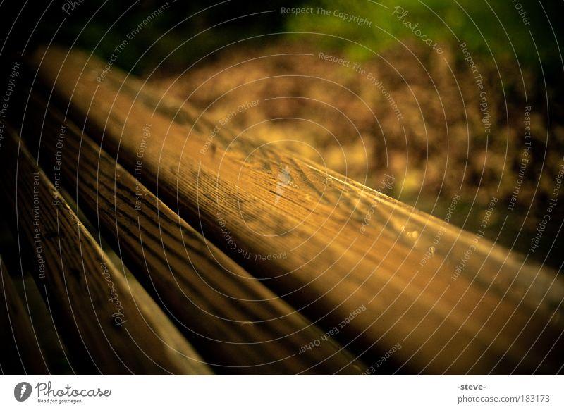 holzig Farbfoto Außenaufnahme Nahaufnahme Detailaufnahme Dämmerung Schwache Tiefenschärfe Holz dunkel braun Bank Parkbank Blatt Herbst