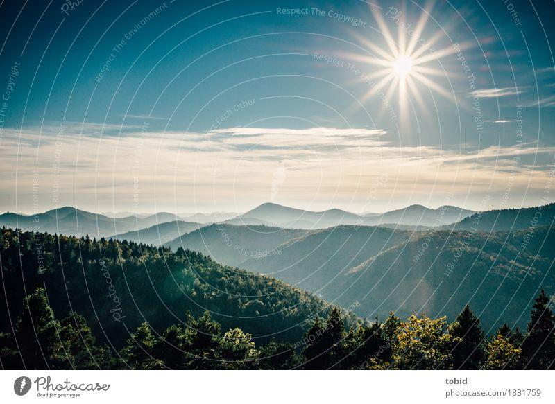 Sonnenschein Himmel Natur Pflanze Landschaft Wolken Ferne Wald Berge u. Gebirge Horizont frei fantastisch Schönes Wetter Freundlichkeit Hügel Unendlichkeit