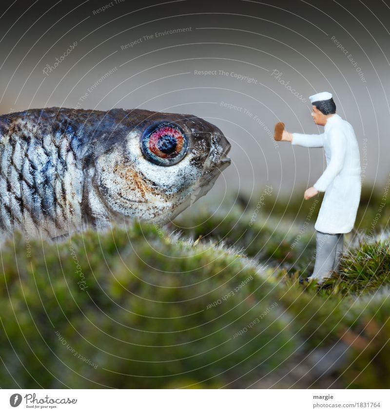 Miniwelten - Heute gibt es Fischstäbchen II Lebensmittel Essen Picknick Bioprodukte Mensch maskulin Mann Erwachsene 1 Pflanze Gras Moos Tier Nutztier grau grün