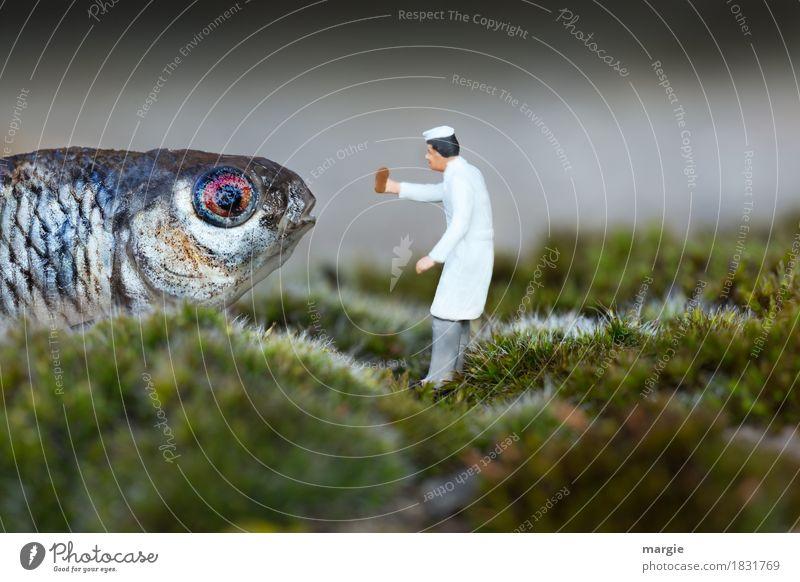 Miniaturwelten - Heute gibt es Fischstäbchen! Lebensmittel Bioprodukte Beruf Koch Landwirtschaft Forstwirtschaft Gastronomie Mensch maskulin Mann Erwachsene 1
