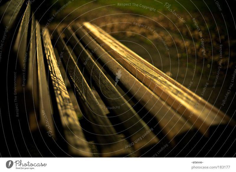 Sitzgelegenheit Farbfoto Außenaufnahme Abend Dämmerung Schatten Unschärfe Schwache Tiefenschärfe Herbst Blatt Park dunkel braun Bank Parkbank Herbstlaub