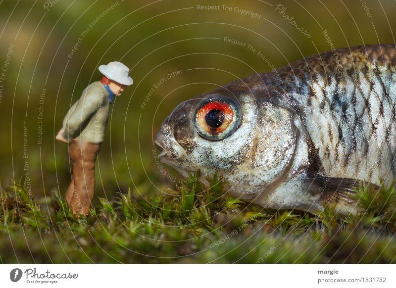Miniwelten - monotone Unterhaltung Fisch Bioprodukte Mensch maskulin Mann Erwachsene 1 Tier Nutztier Wildtier Tiergesicht braun grün Moos Moosteppich