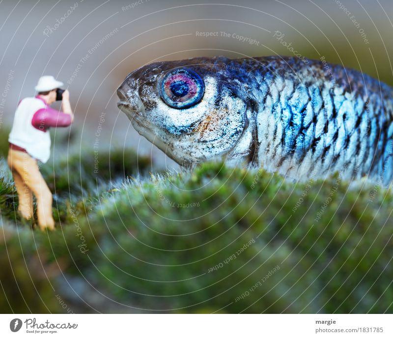 Miniwelten - Bitte recht freundlich! Fisch Bioprodukte Freizeit & Hobby Modellbau Ferien & Urlaub & Reisen Tourismus Safari Mensch maskulin Mann Erwachsene 1
