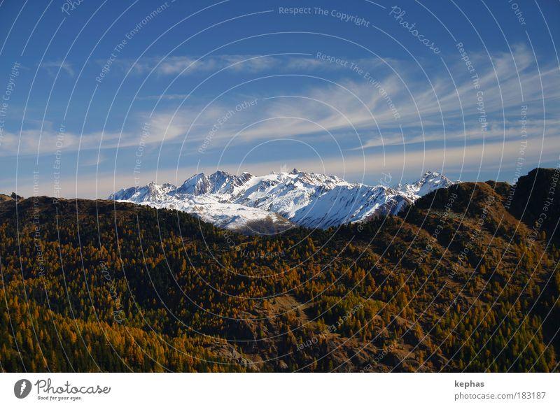 Rocky Mountains? Farbfoto Außenaufnahme Menschenleer Textfreiraum oben Textfreiraum unten Tag Umwelt Natur Landschaft Pflanze Luft Himmel Wolken Herbst Wetter